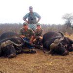 Sondelani Buffalo Trophies
