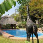 Matetsi Lodge Swimming Pool