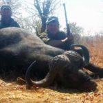 Matetsi Buffalo Hunting Trophy