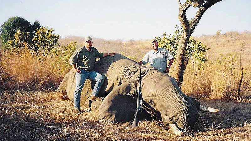 Matetsi Safari Area Hunt