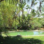 Sondelani Game Lodge Pool