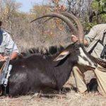 Matetsi Hunting Zimbabwe