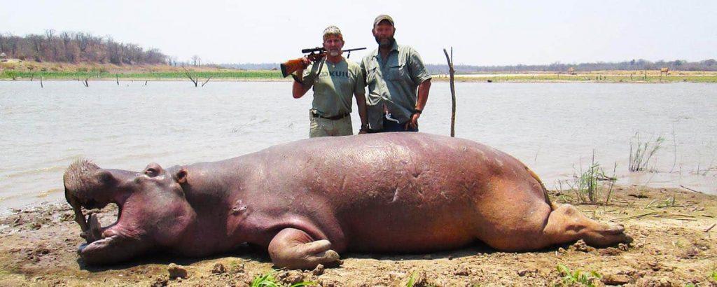 Hippo Hunting At Lake Kariba
